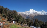 Ghorepani Poon Hill and Chitwan