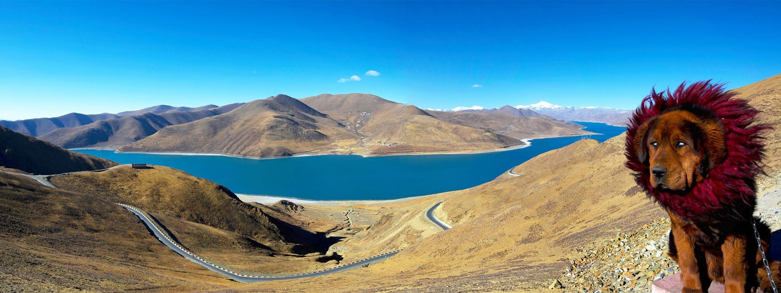 Overland Tours and Trekking in Tibet
